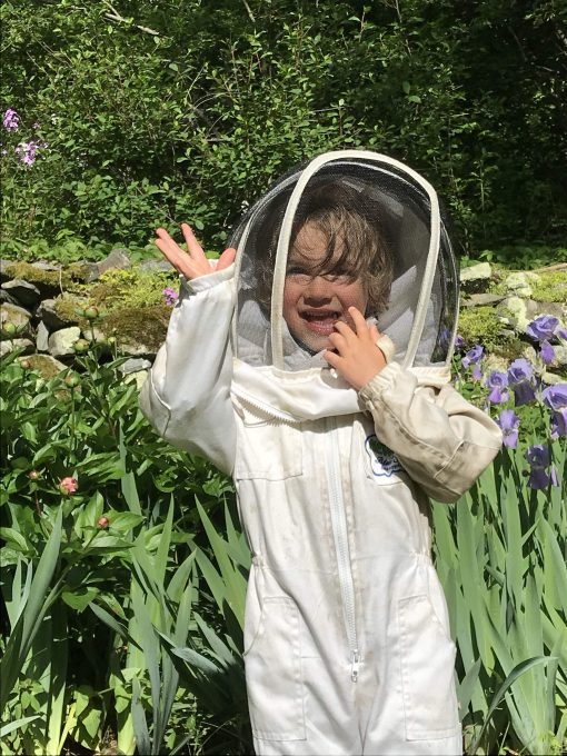 A little boy in a beesuit
