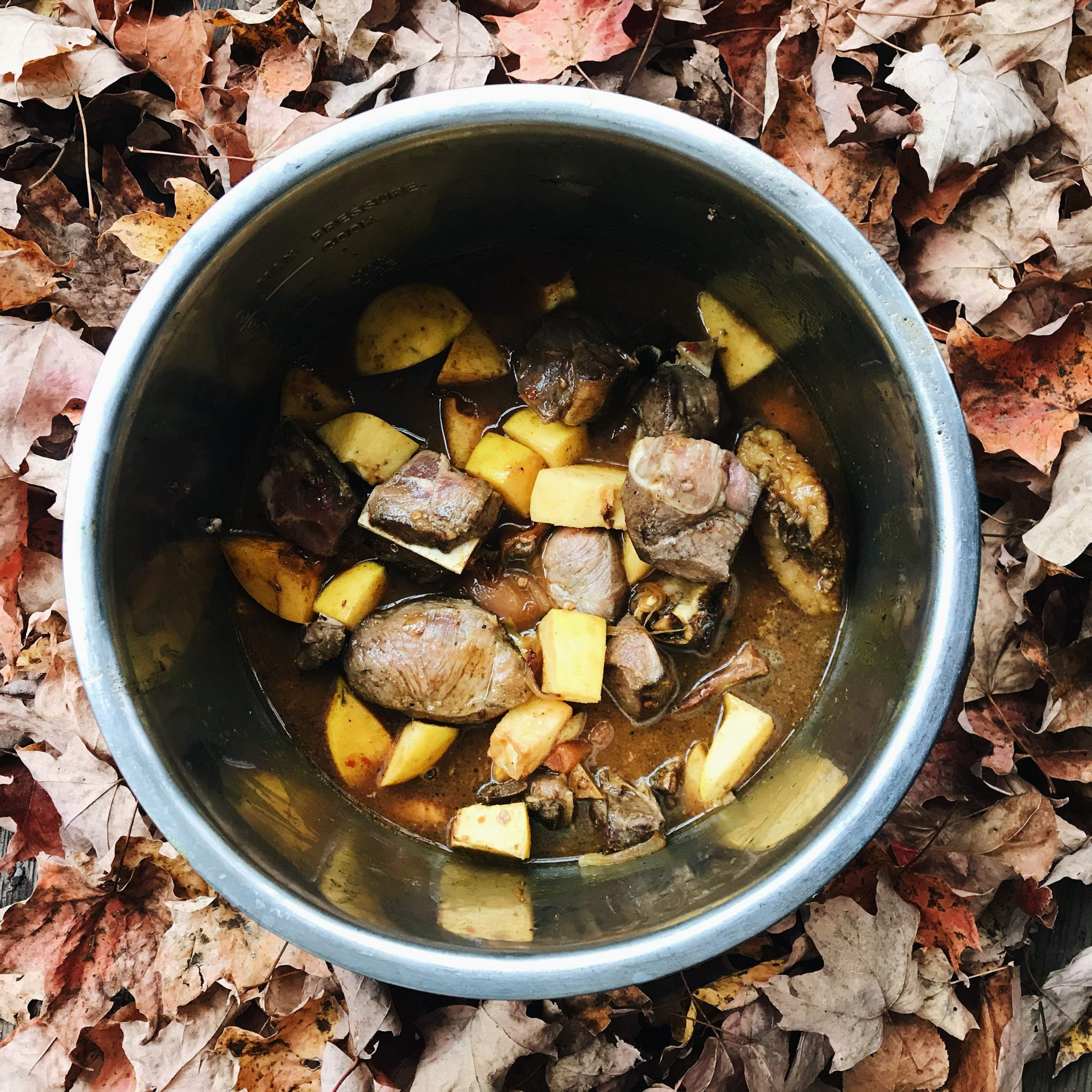 Lamb stew with quince in pot
