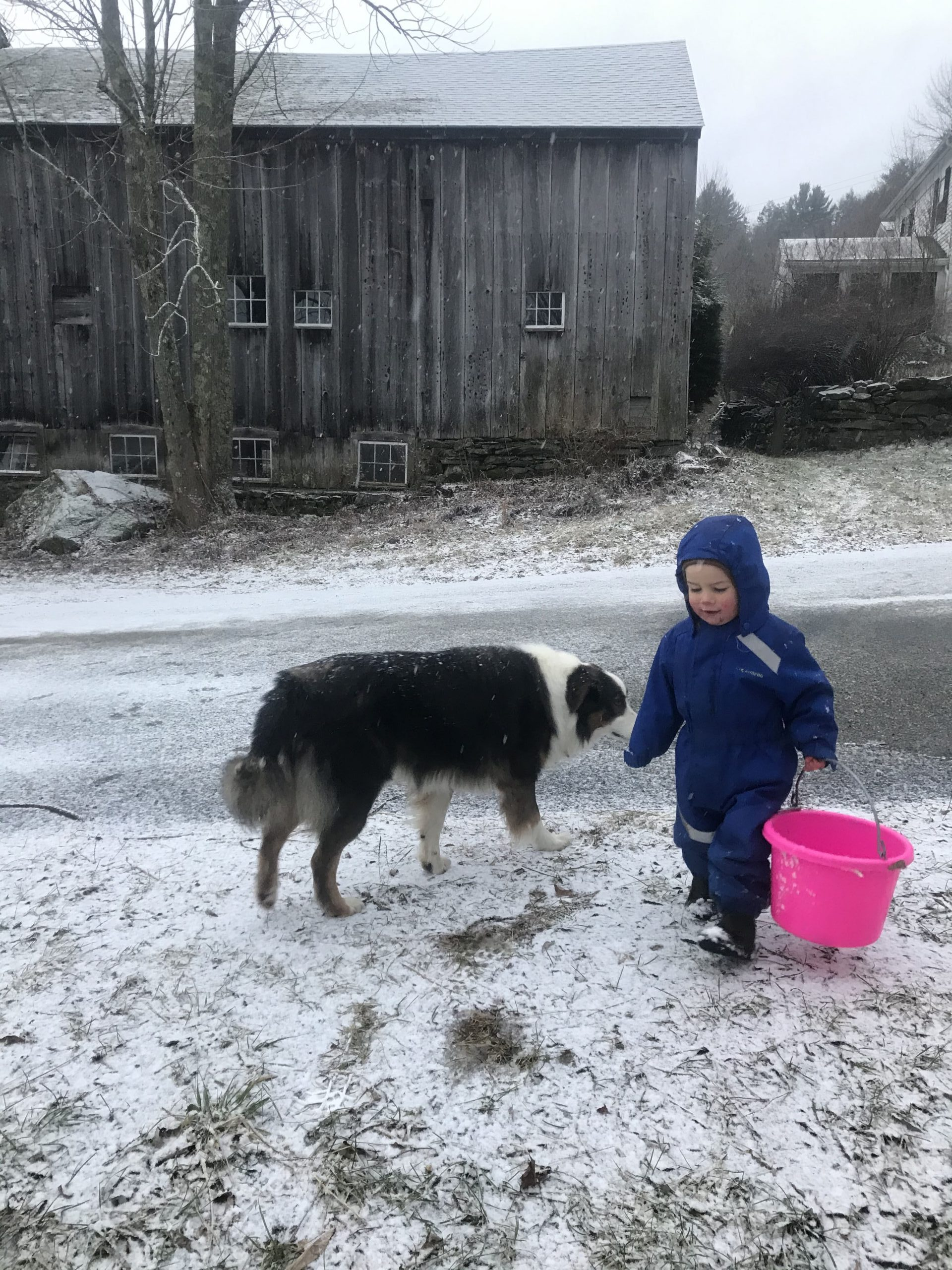 Little boy dressed for the outdoors on winter day with bucket in hand and dog besides him