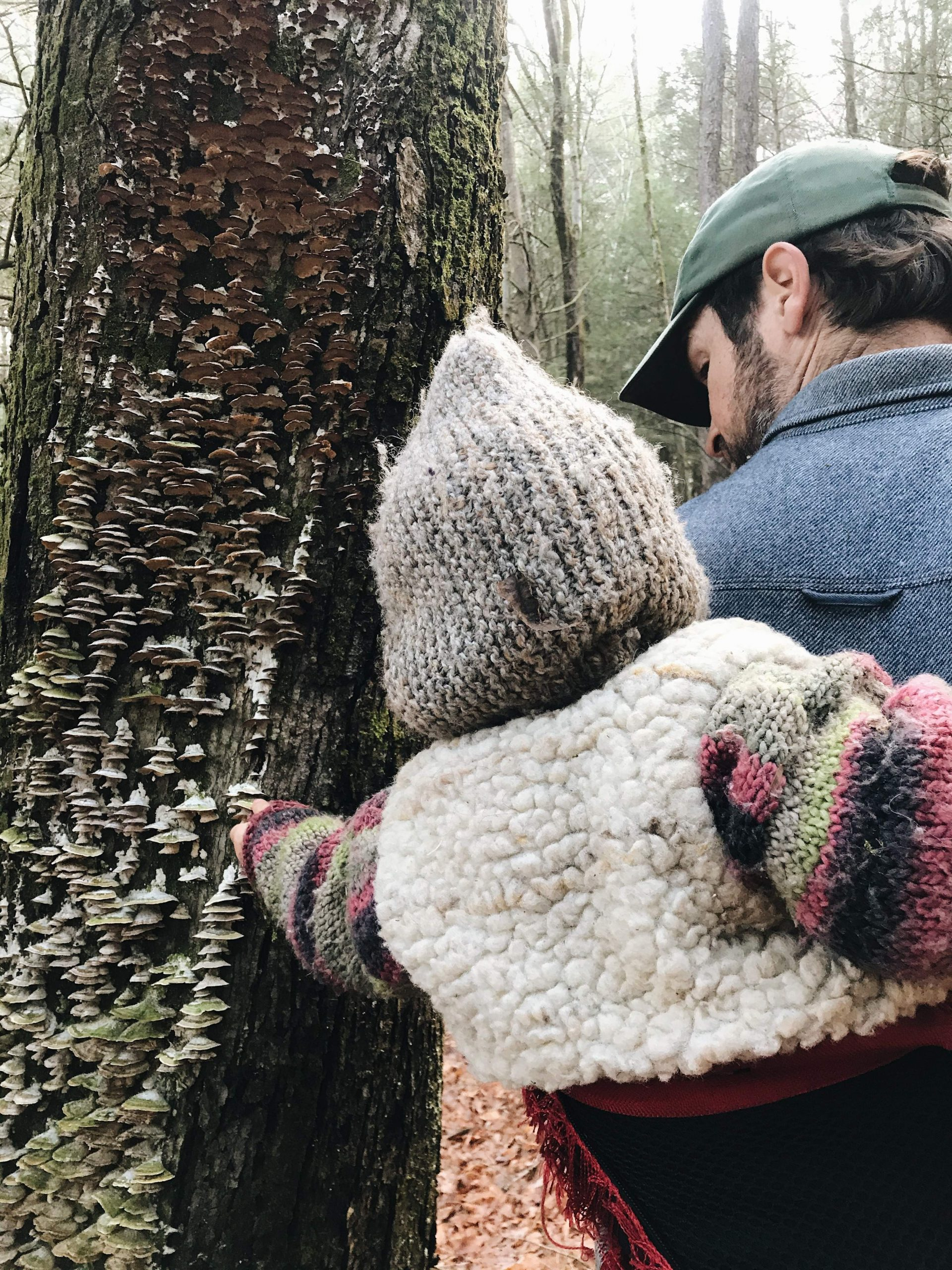 Baby on dad's back touching funghi on tree