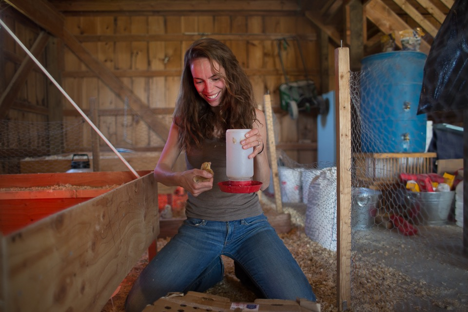 Marleen caring for a backyard layer chicken in the brooder before it is raised on pasture