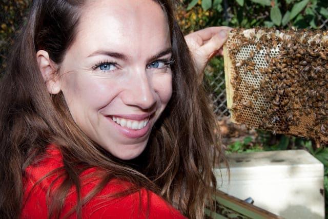 Keeping honeybees in my backyard
