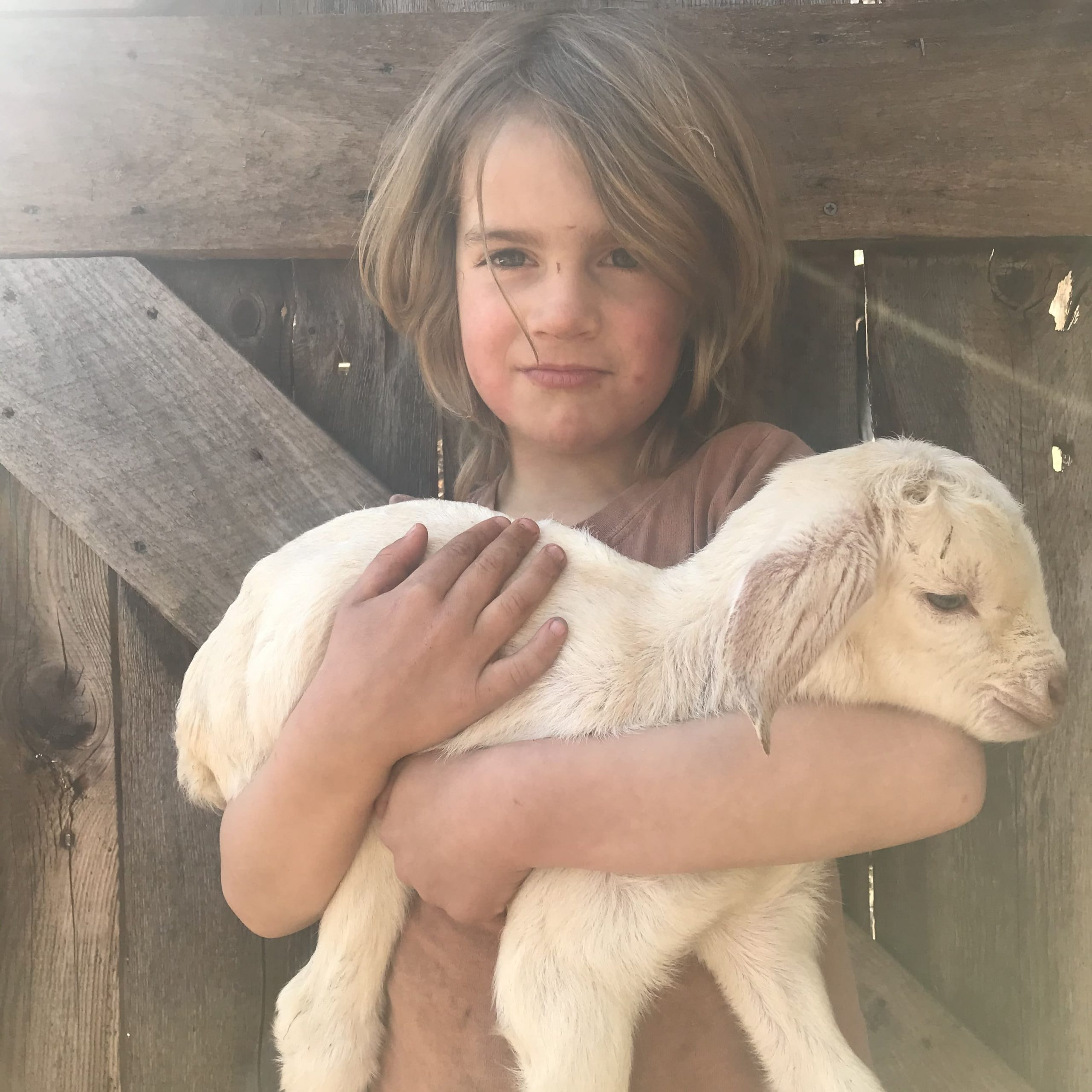 Boy with newborn goat kid